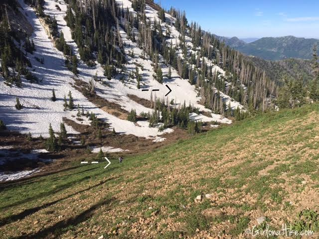 Hiking Santaquin Peak, Wasatch Peak Baggers