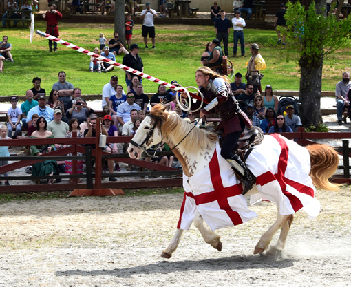 The Arena | Georgia Renaissance Festival | Photo: Travis S. Taylor