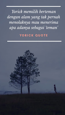Review Novel Yorick