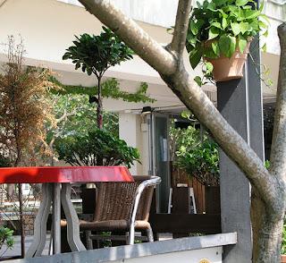 outdoor bar in Sai Kung