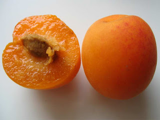 Plumcot Fruit Pictures