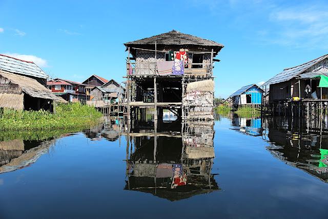Jardins flottants de Kela sur la lac Inlé, Birmanie