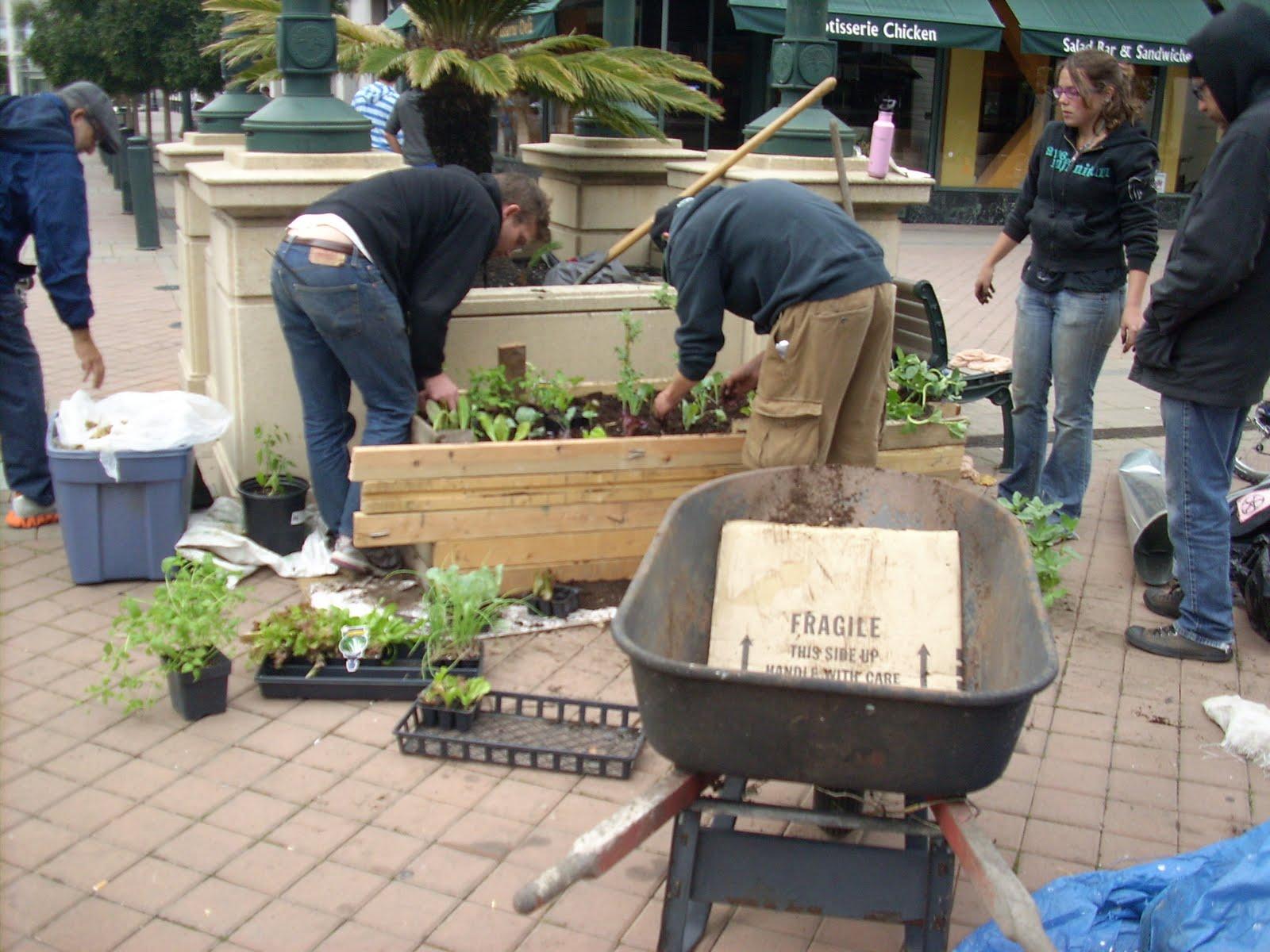 The Free Farm: November 2011