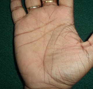 example image of double life line in palmistry