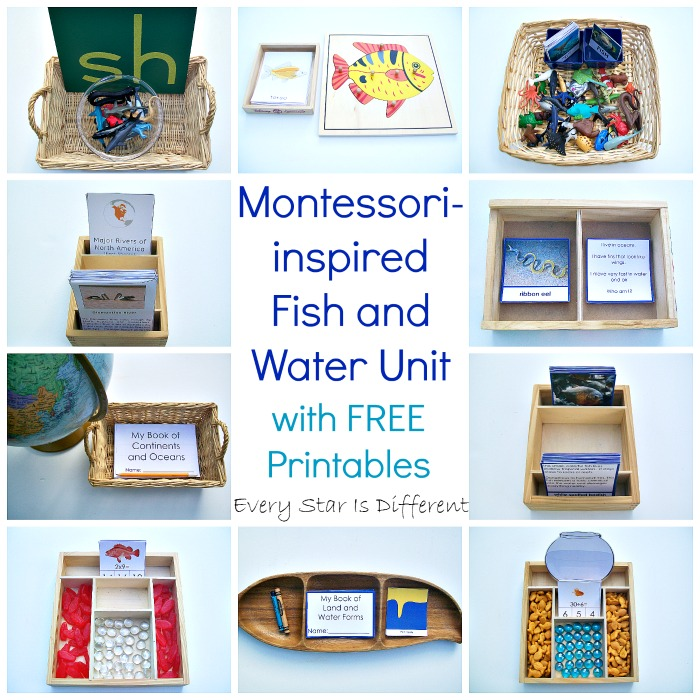 Montessori-inspired Fish and Water Unit