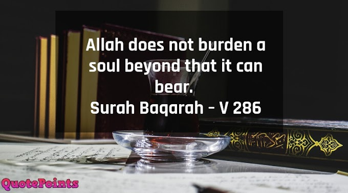 Quran Quotes on Love   Islamic Quotes on Love and Life