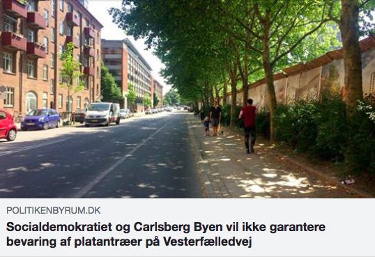 https://politikenbyrum.dk/Nyheder/art6613484/Socialdemokratiet-og-Carlsberg-Byen-vil-ikke-garantere-bevaring-af-platantræer-på-Vesterfælledvej
