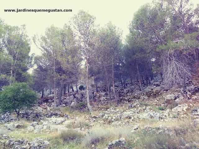 La Sierra y restos de ruinas