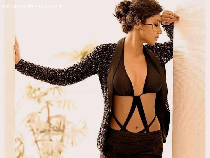 Shreya Saran Sexiest Pictures-Hot navel Cleavage Pics