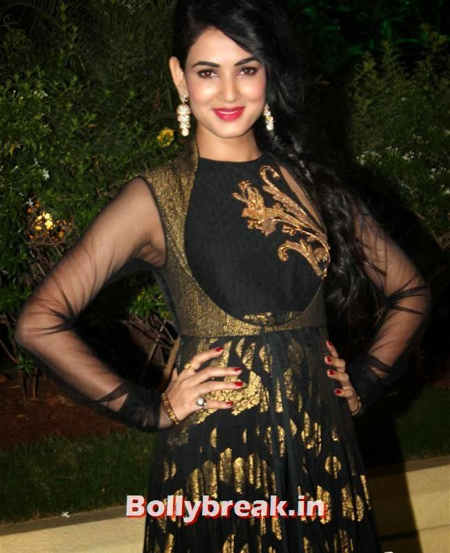 Sonal Chauhan, Bollywood Babes at Vishesh Bhatt Wedding Reception