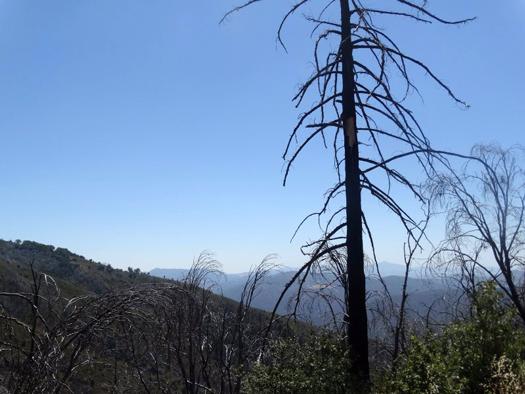 Palomar Mountain and Lake Henshaw