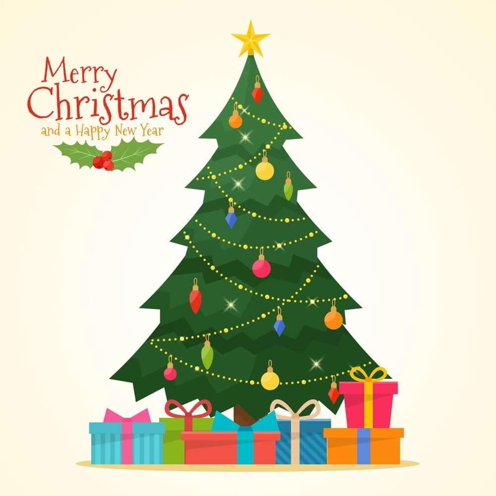 Christmas Tree Photos