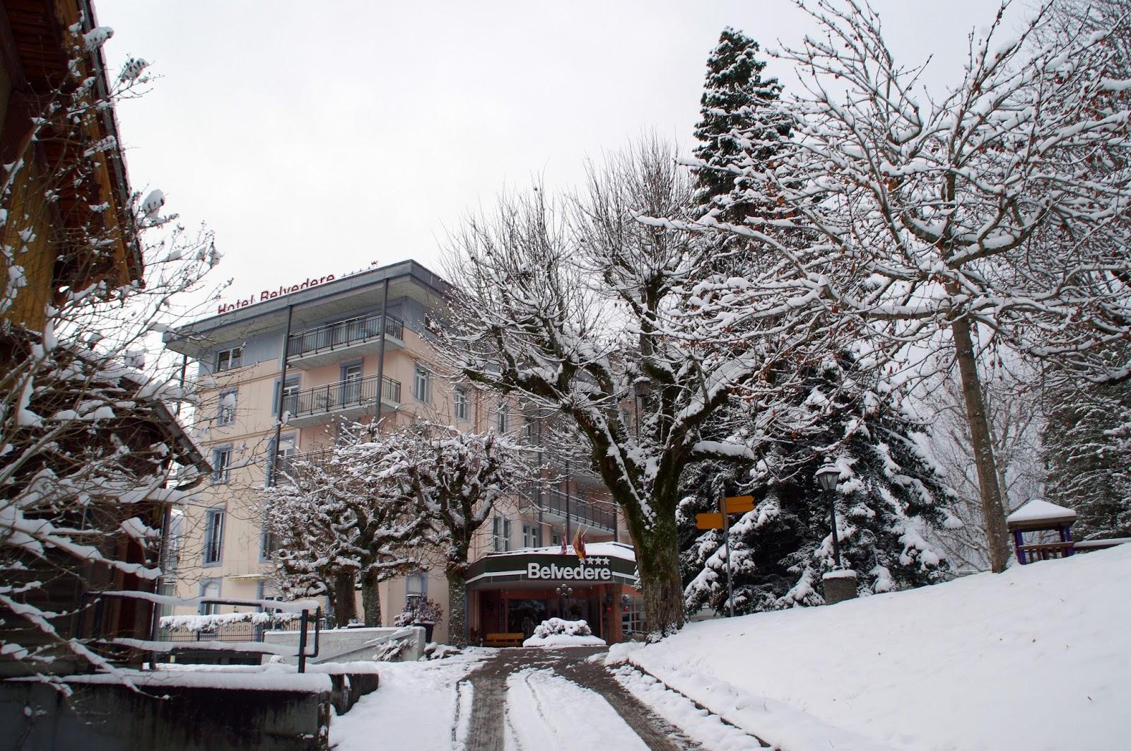 Hotel Belvedere Grindelwald  Exterior Winter