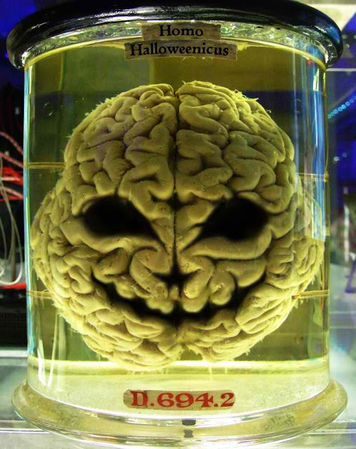The Brain in a Jar Experiment