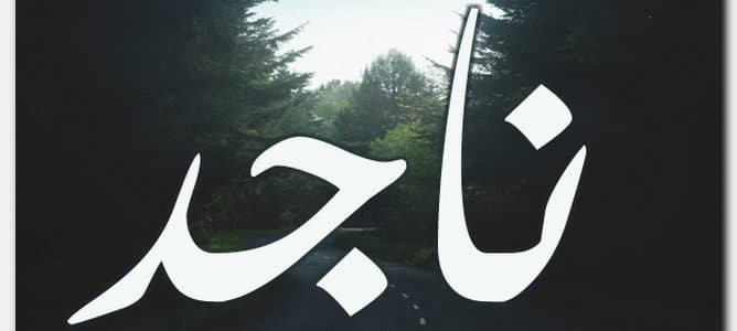 أسم ناجد ومعناه فى اللغة العربية 2018
