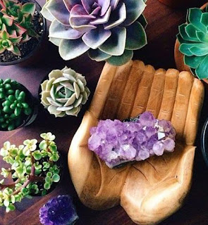 amethyst crystal succulents - on woodland road young living essential oils