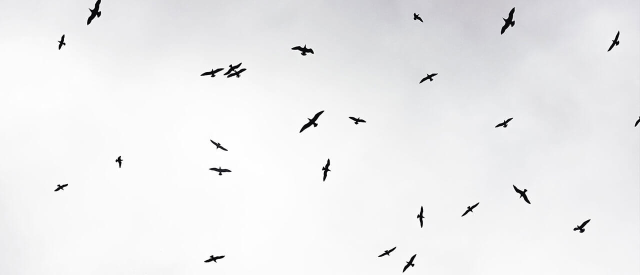 आठवणींचं काहूर - मराठी कविता | Aathavaninach Kahoor - Marathi Kavita