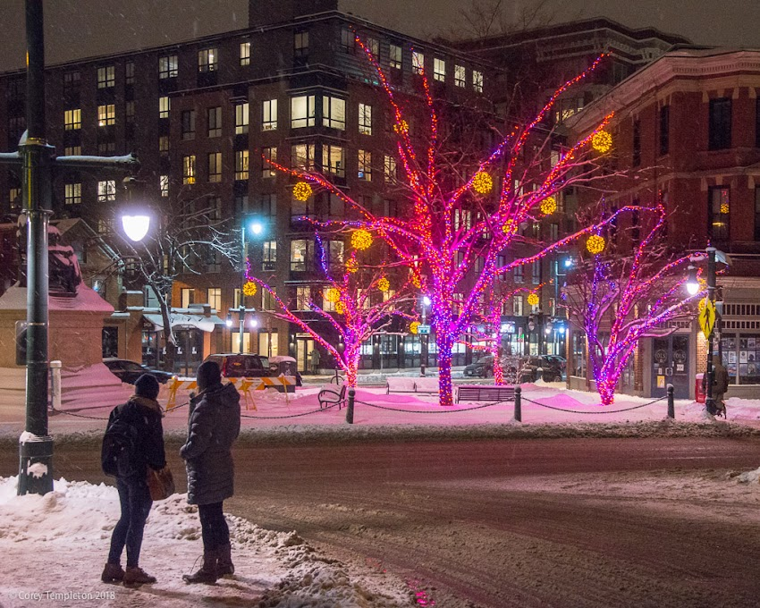 Portland, Maine USA January 2018 photo by Corey Templeton. Admiring the lights in a snowy Longfellow Square.