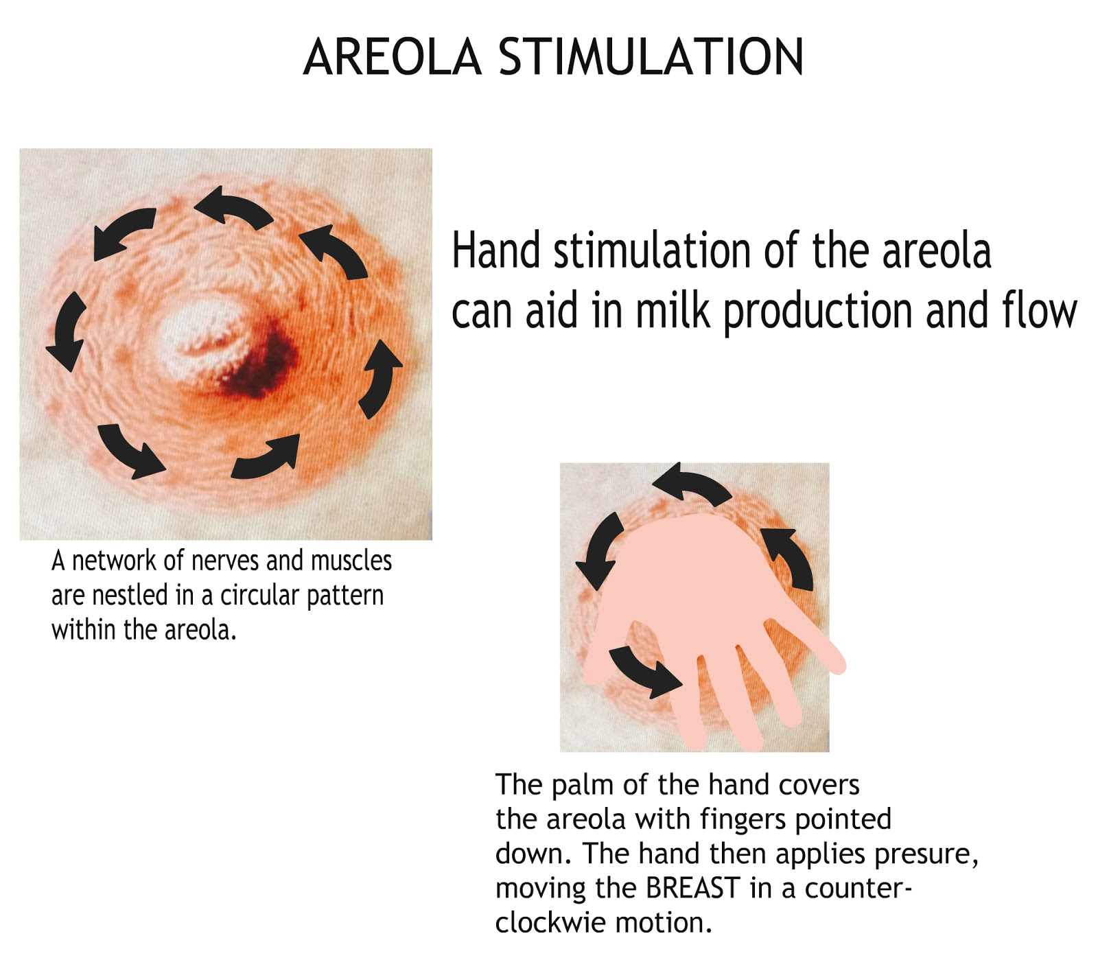 How to stimulate breast areola