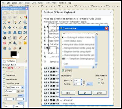 Cara Membuat Blur Sebagian Gambar di GIMP 6