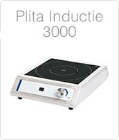 http://www.amenajarihoreca.ro/2012/06/wok-cu-inductie-profesionala-pret.html