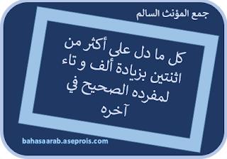 Penjelasan Jama' Mu`annats Salim   جمع المؤنث السالم