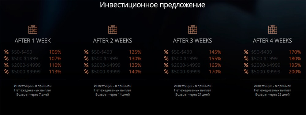 Инвестиционные планы Stradivarius Investments