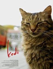 pelicula Kedi (Gatos de Estambul) (2016)
