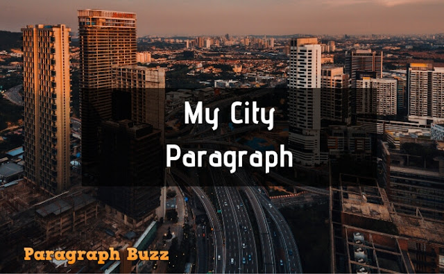 Paragraph on My City