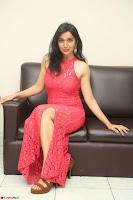 Sakshi Kakkar in Red Legsplit Sleeveless Gown at Dare movie Press meet ~  Exclusive 071.JPG