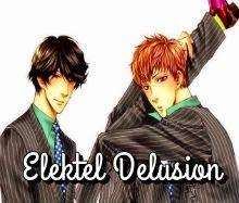 Elektel Delusion