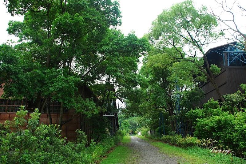 台中親子賞荷景點|東勢林業文化園區|國際木雕藝術~森活藝術