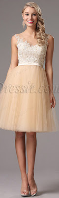 http://www.edressit.com/edressit-sleeveless-lace-beaded-top-cocktail-party-dress-04160614-_p4601.html