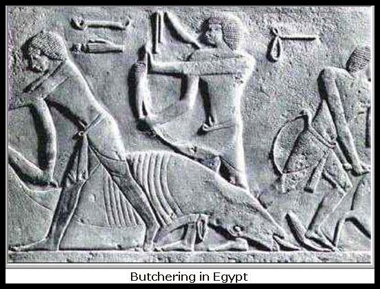 f43e94690e4c ANIMAL PROCESSING IN ANCIENT EGYPT