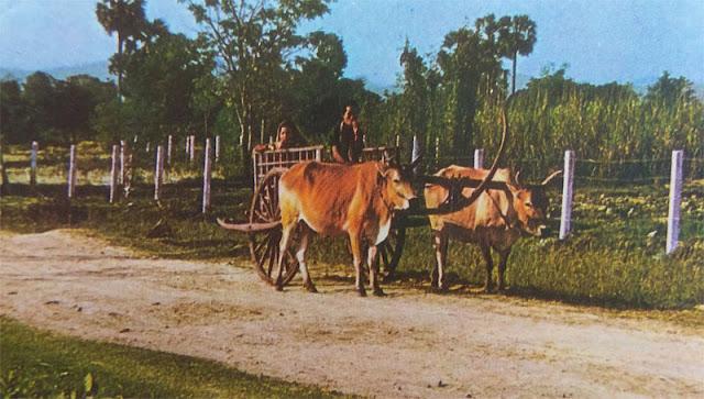 Gambar Gerobak petani Kampuchea