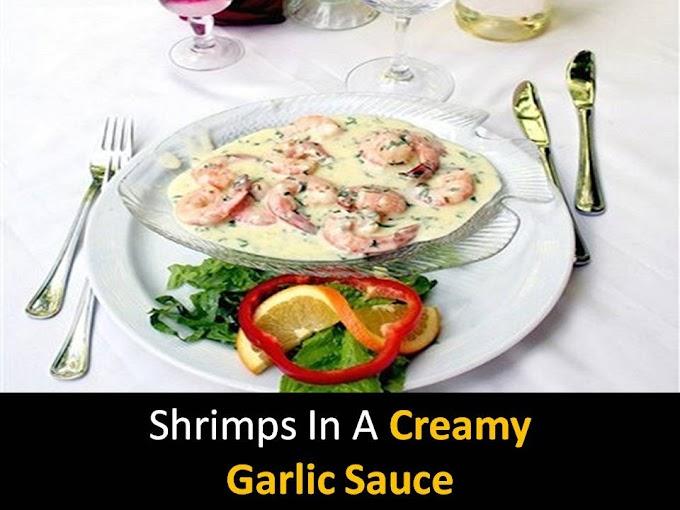 Shrimps in a creamy garlic sauce