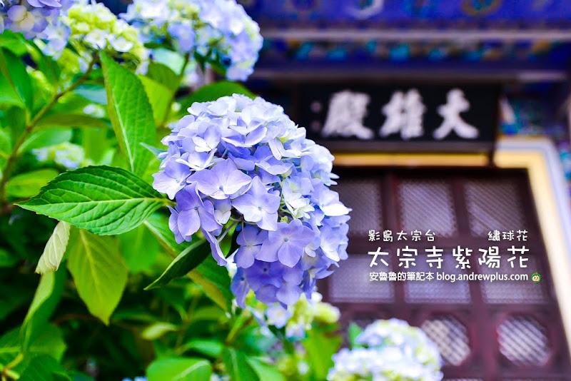 Taejongsa-temple.jpg