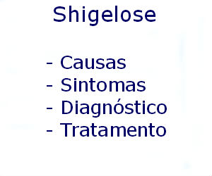 Shigelose causas sintomas diagnóstico tratamento prevenção riscos complicações
