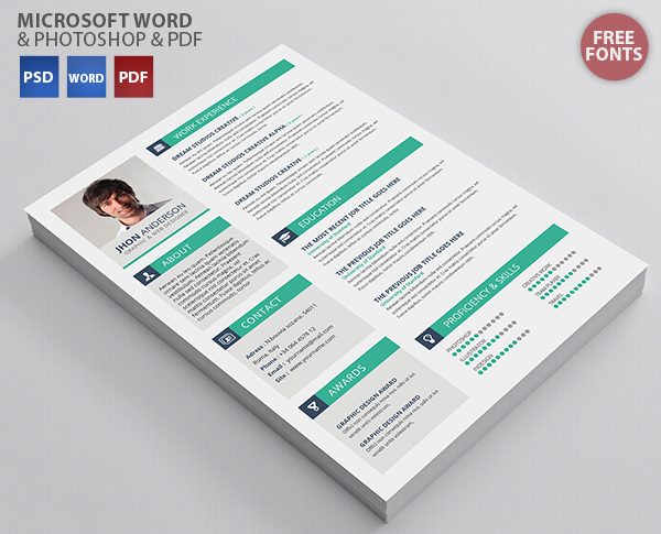 Best Professional Resume Templates (PSD, AI, Word) - Free PSD Files