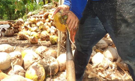 Senjata Tradisional Jawa Barat Sulimat