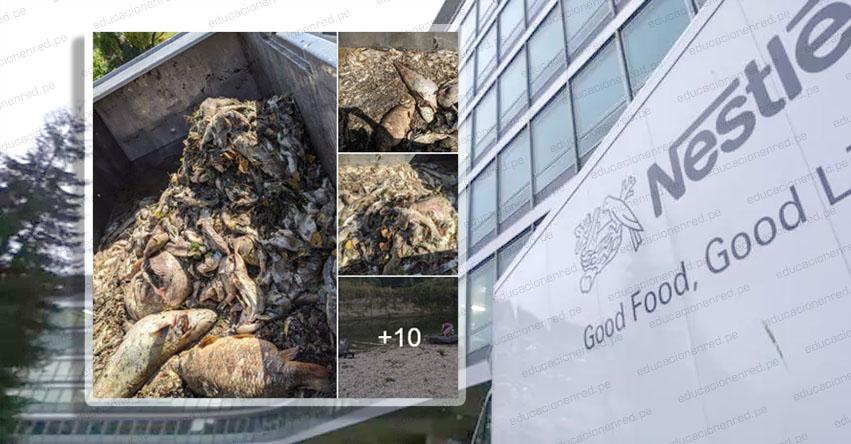 TRAGEDIA AMBIENTAL: Demandan a Nestlé por toneladas de peces muertos en un río de Francia