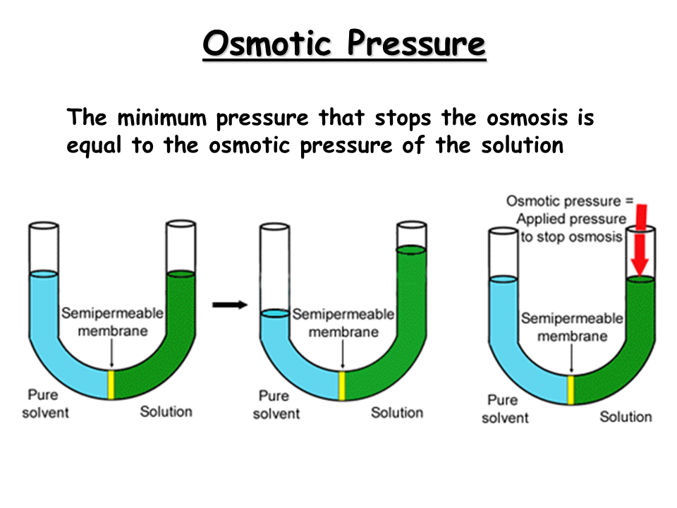 PHARMACEUTICAL MICROBIOLOGY: Osmotic Pressure