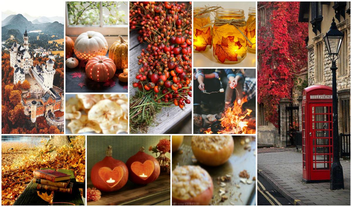 Autumn Mood Board Fall Inspiration