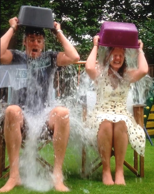 Joelociraptor: Why I'm Not Doing the Ice Bucket Challenge
