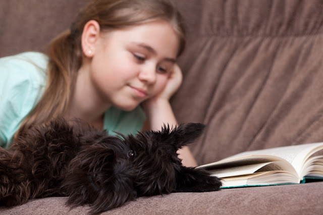 Canine reading programs can help literacy. Photo shows girl reading with dog.