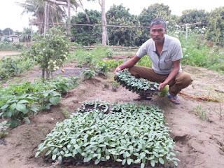 farmer-adopt-pro-trey-system