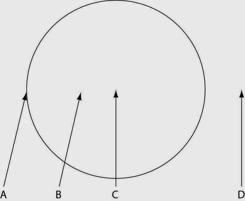 Alat reproduksi aseksual zygomycota asexual reproduction