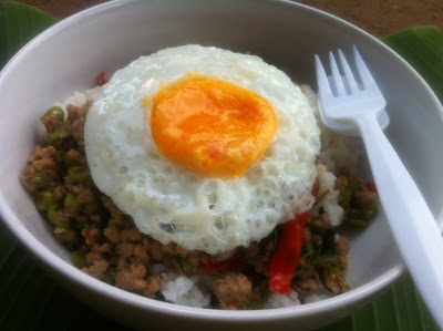 THAI FOOD STIR BASIL PORK CHOPS FRIED EGG
