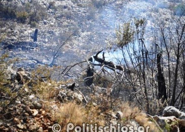 Εικόνες καταστροφής στη Χίο από την πυρκαγιά - ΦΩΤΟ