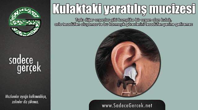 Kulaktaki yaratılış mucizesi